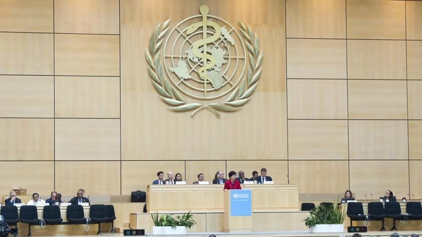 İtalyan Bilim İnsanı Dünya Sağlık Örgütü Açıklaması -1
