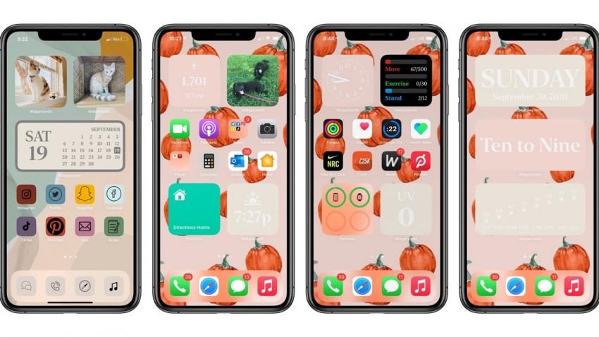 iPhone Ana Ekran Özelleştirme Nasıl Yapılır?