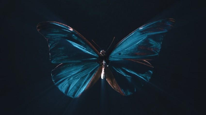Kelebek Etkisi Nedir ve Neden Yanlış Anlaşılıyor? -1