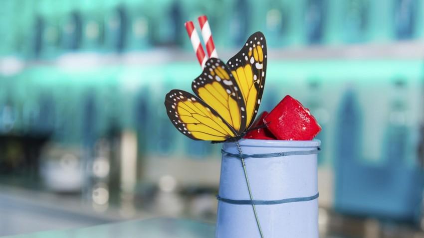 Kelebek Etkisi Nedir ve Neden Yanlış Anlaşılıyor?