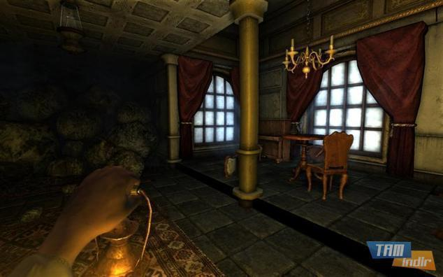 Amnesia: The Dark Descent (Frictional Games)