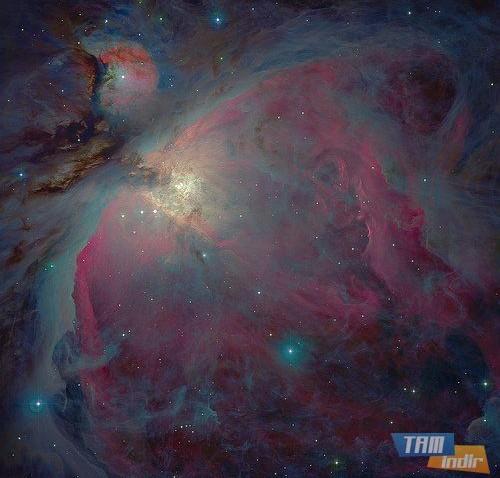 Orion Nebula: Messier 42