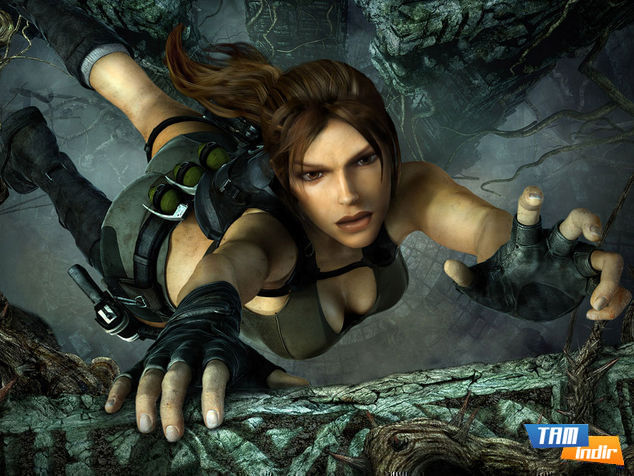 <strong>Tomb Raider (360, PS3, PC)</strong>