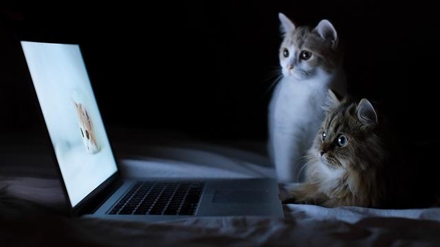 Google Chrome ile Laptop Şarjınız Bitmeyecek!