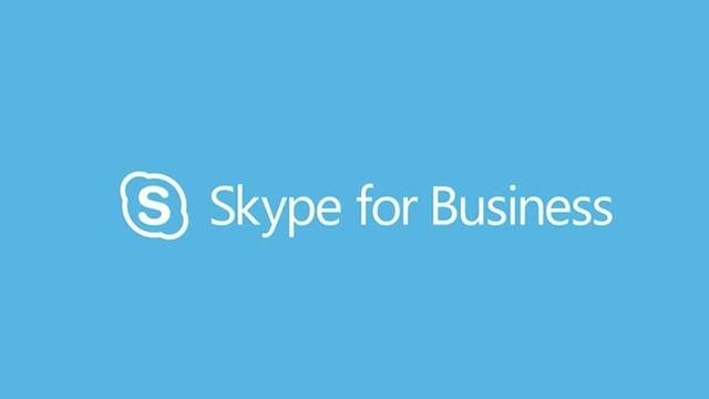 Profesyonellere Yönelik Skype Yayınlandı!