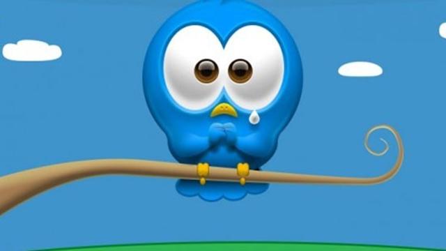 Twitter'dan Sonra Google DNS'leri de Engellendi