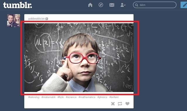 Tumblr Fotoğraf Boyutları Nelerdir?