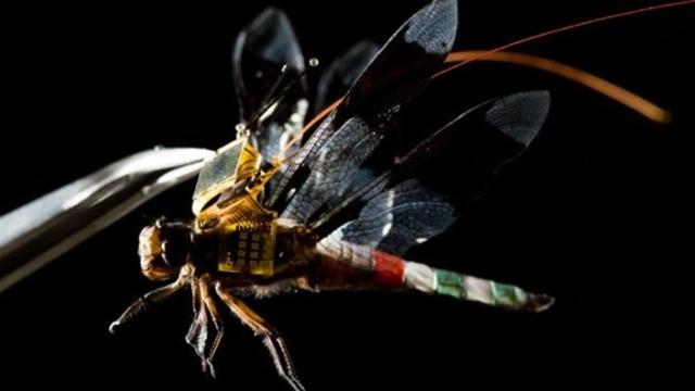 Yusufçuktan Yapılan Drone'un İlk Videosu Yayınlandı!