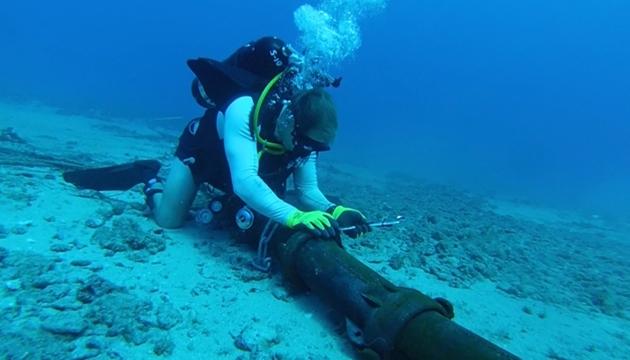 Google'ın Su Altı Kablolarına Köpekbalıkları Saldırıyor