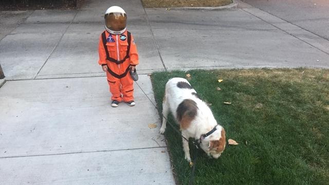 Astronot Kıyafetiyle Köpeğini Gezdiren Çocuk Photoshop Kurbanı Oldu