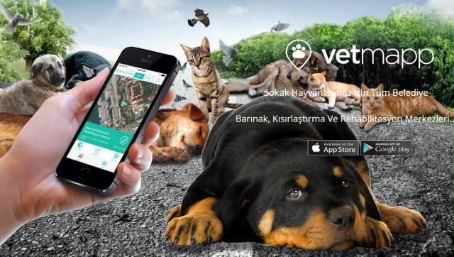 Acil Durumlarda Hayvanların Canını Kurtarmak İçin VetMapp Kullanın!
