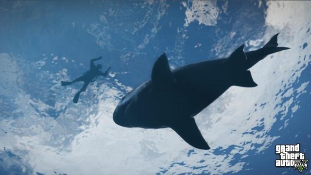 GTA V'te Köpekbalıkları!