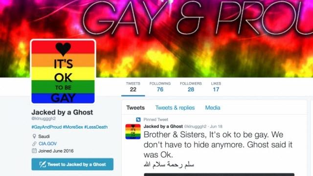 Hacker, 250 IŞİD Twitter Hesabını Pornografik İçeriklerle Trolledi