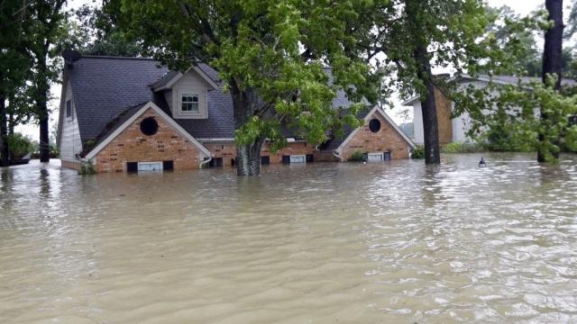 Apple Siri, Kasırga Sırasında Hayat Kurtardı