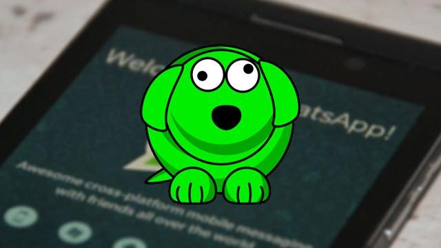 WhatsDog, WhatsApp Kullanan Çiftlerin Arasını Açacağa Benziyor!