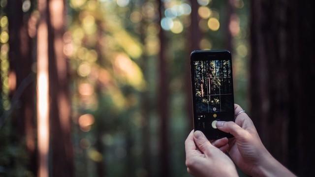 Eski Apple Tasarımcısından Profesyoneller İçin Kamera Uygulaması: Halide