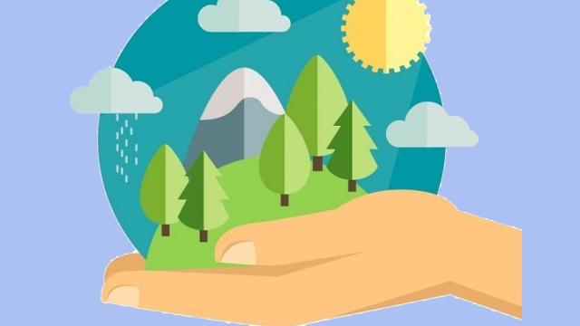 Microsoft, Çevreci Yapay Zeka Geliştiriyor