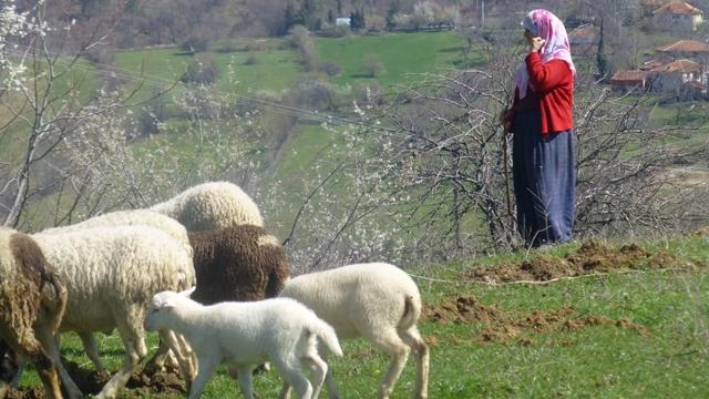 Türkiye'de Kaç Yerleşim Yerinde Cepten Konuşulamıyor Biliyor musunuz?