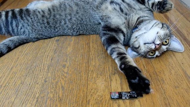 Dünyanın En Güvenli Bilgisayarı Bir USB Bellek Boyunda