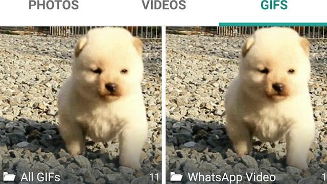 WhatsApp ile Hareketli GIF Göndermeye Hazır mıyız Arkadaşlar?