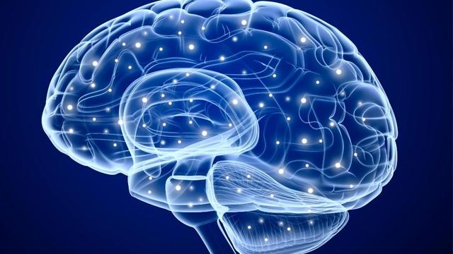 'Yedek Parça Maksatlı' Yapay Beyin Hücreleri Üretildi