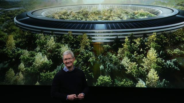 Apple Park İçin Dünya'nın En İyi Ağaçları Aranıyor