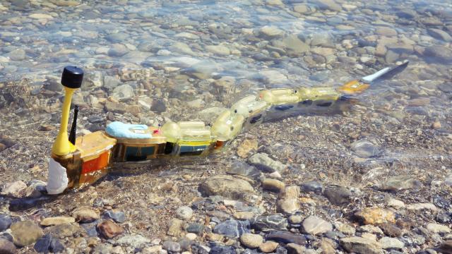 Modüler Yılan Balığı Robotu Su Kirliliğini Ölçüyor