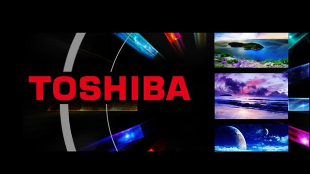Zorlu Holding Toshiba'nın TV Bölümüne Talip Oldu
