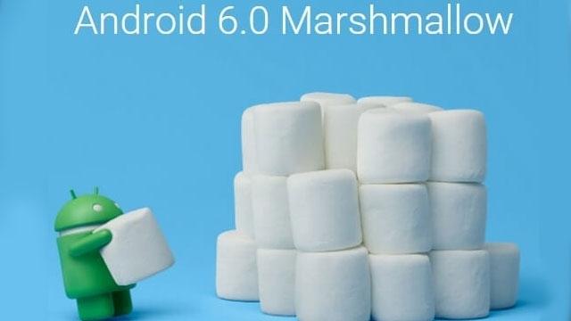 Marshmallow Kullanımı Gün Geçtikçe Artıyor