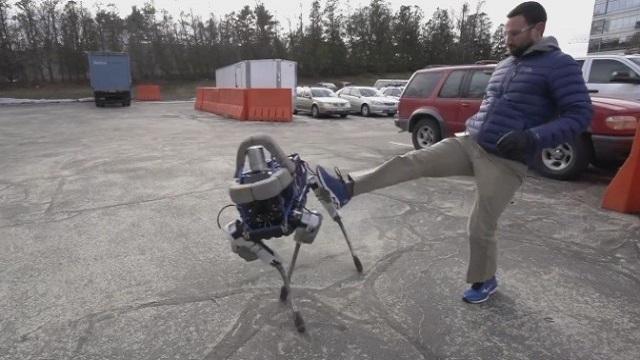 Robotlara Yapılan Bu Zulme Dur Deyin!