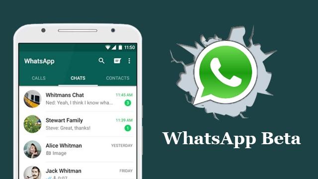 WhatsApp Android Telefonlar İçin Beta Programını Başlattı