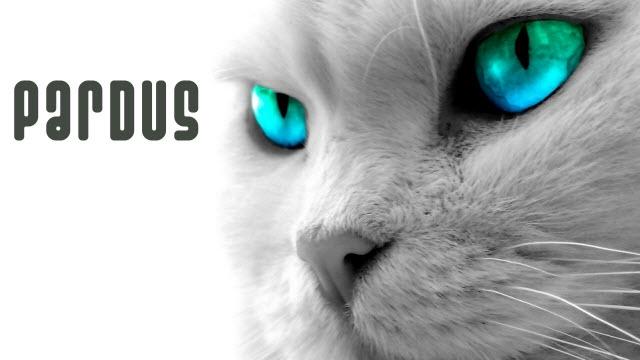Pardus'un 2013 Sürümü Kullanıma Sunuldu