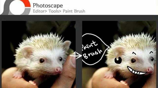 PhotoScape - Boya Fırçası