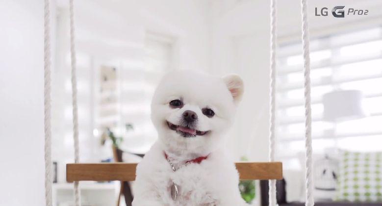 LG G Pro 2 Magic Focus Özelliği Tanıtım Videosu