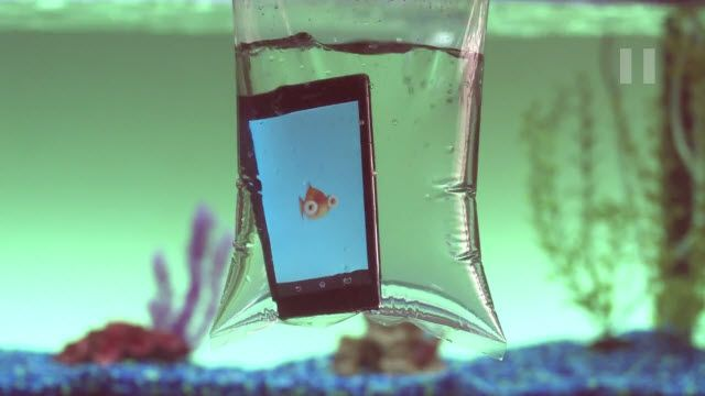 Sony Sualtı Uygulamaları: Goldie Tanıtım Videosu