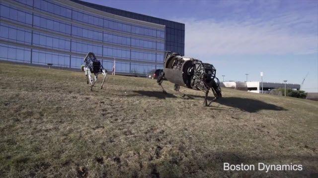 Spot: Yeni Dünyanın Mekanik Hayvanı