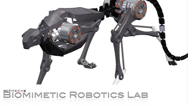22 KM Hızla Koşan Robot Çita