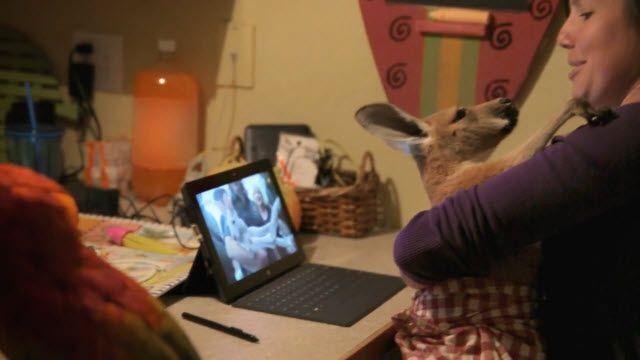 Skype - Hayvanlı Aile Portresi