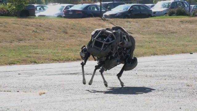 Robot Çita 25 Km/h Hız Yapabiliyor