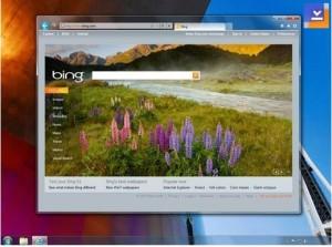 Internet Explorer 9 (Vista)