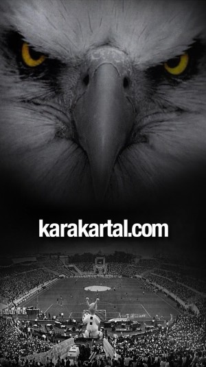 Karakartal