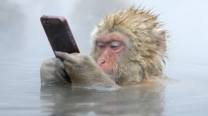 Eski Telefonlarınızı Satmayacaksanız Değerlendirmeniz İçin 8 Muhteşem Fikir