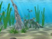 Denizde Yaşam Ekran Koruyucusu