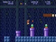 Super Mario Forever