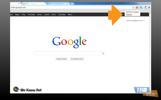 how to set cookies on google chrome