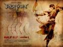 Half Elf - Archer 3