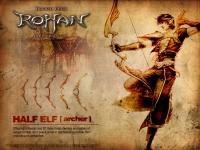 Half Elf - Archer