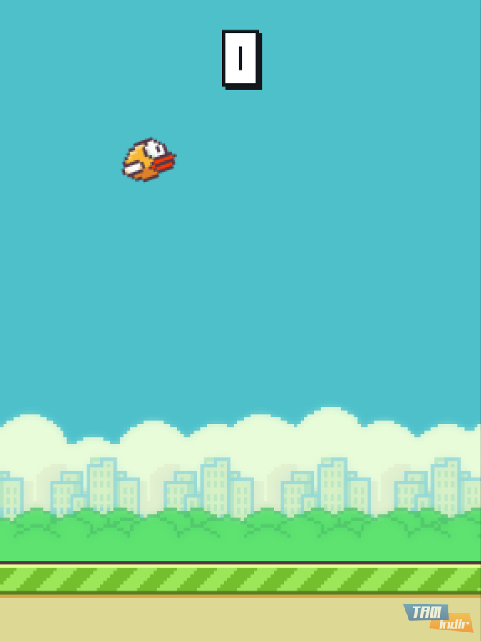 New Flappy Bird Game