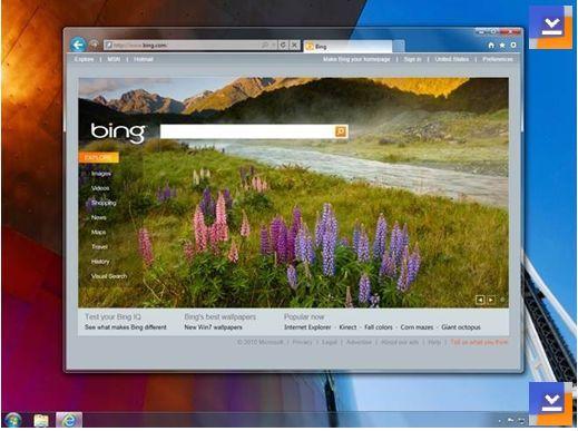 Internet Explorer 9 (Windows 7)