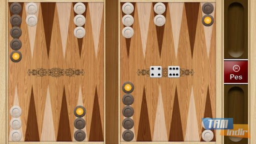 Play65 backgammon download.